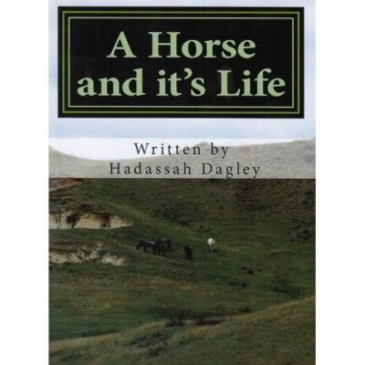 A Horse and It's Life