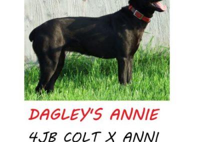 Dagley's Annie